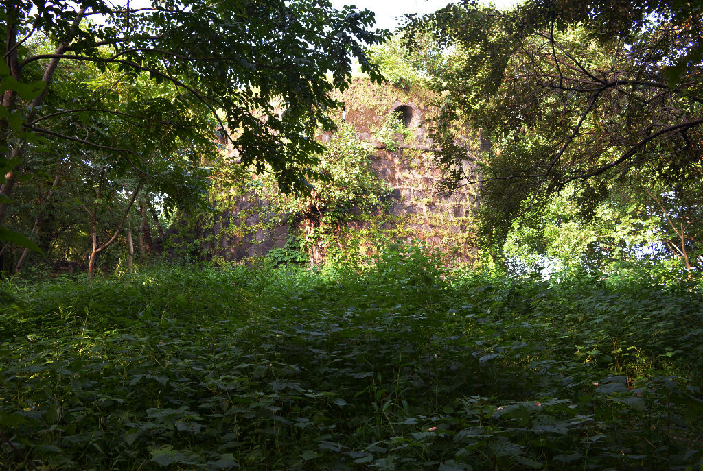 The ruins of belapur fort and watchtower